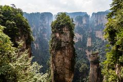 Free Natural Quartz Sandstone Pillar Hallelujah Mountain, 1,080 M Is Located In The Zhangjiajie Wulingyuan National Park, China Royalty Free Stock Photo - 139164025