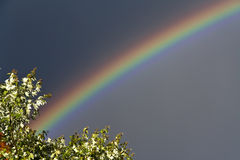 Natural Rainbow Stock Photography