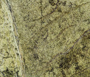 Natural Rainforest Green marble texture Royalty Free Stock Photos