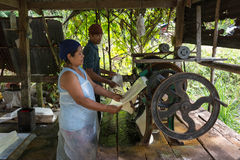 Natural raw rubber production in pressing machine Royalty Free Stock Images