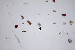 Natural recycled eco paper with rose petals Stock Images