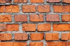 Natural red brick wall background. Vintage bricks, gray seam.  stock photography