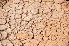 Natural red soil ground brown background after drought Stock Images