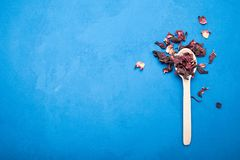 Natural red tea hibiscus in a spoon on a blue background. Space for text stock photo