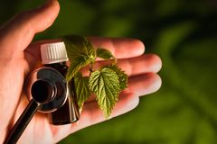A bottle with nettle on the palm of your hand royalty free stock image
