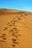 Natural Reserve of Dunes of Maspalomas, in Gran Canaria, Spain Royalty Free Stock Images