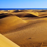 Natural Reserve of Dunes of Maspalomas, in Gran Canaria, Spain Stock Photos