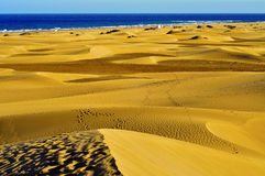 Natural Reserve of Dunes of Maspalomas, in Gran Ca Royalty Free Stock Photography