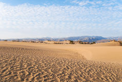 Natural Reserve of the Dunes of Maspalomas Royalty Free Stock Photo