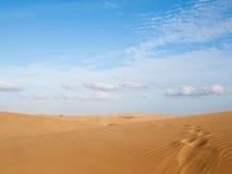 Natural Reserve of the Dunes of Maspalomas Stock Photos