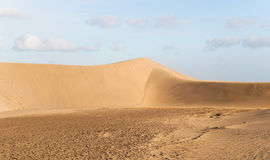Natural Reserve of the Dunes of Maspalomas Stock Photography