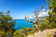 Natural reserve of mount Karaul-Oba, Crimea, city of Sudak, Black sea Royalty Free Stock Images