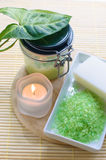 Natural resources for spa Royalty Free Stock Images