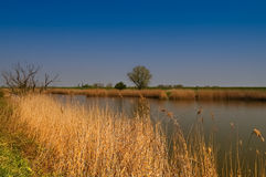 Natural river landscape neaby Magdeburg Stock Photo