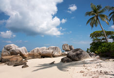 Natural rock formation in the sea and on white sand beach with a palm tree in Belitung Island. Royalty Free Stock Image