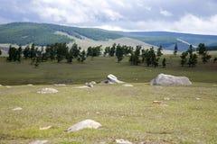 Natural Rock Garden Stock Image