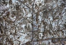 Natural Rock Paving Tiles Stock Photo
