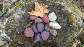 Natural Rock with Purple and White Stones and Leaf royalty free stock photography