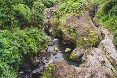 Rock and water on forests. Natural rock and water with plants on forests stock photography