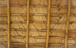 Natural roof Stock Photography