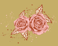 Natural roses. Depicted flowers the but real possible Royalty Free Stock Photography