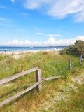 Natural sand dune beach area and fence. Natural sand dune beach area with sea grass and fence royalty free stock image