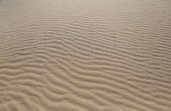 Natural sand of Mojave Desert. The natural sand of the Mojave Desert at the Kelso Sand Dunes in the Western United States is shown Stock Photo