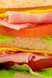 Natural Sandwich Royalty Free Stock Photo