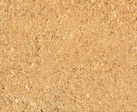 Natural sawdust texture Royalty Free Stock Image