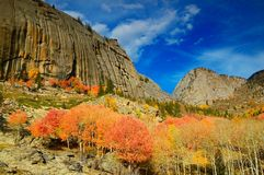 Natural scenery Stock Photos