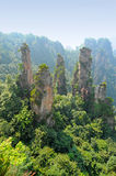 Natural scenery in China. Zhangjiajie natural scenery in China royalty free stock photos
