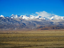 Natural scenery of Tibet Royalty Free Stock Photography