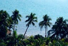 The natural scenery yalong China's hainan island Stock Image