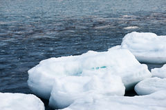 Natural sea ice blocks breaking up against shore. Stock Photography