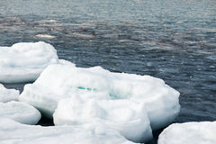Natural sea ice blocks breaking up against shore. Natural sea ice blocks breaking up against shore and ice during freezing winter weather. Arctic aquatic nature Royalty Free Stock Image