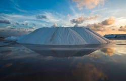Natural sea salt producing in Las Coloradas, Yucatan, Mexico Royalty Free Stock Image