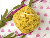 Natural sea sponge with salt and rope Stock Photo