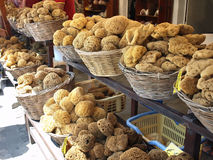 Natural sea sponges. Sponge shop in Yialos - the harbour of Symi island, Greece. Symi is famous for sponge diving stock photography