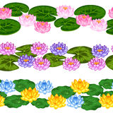 Natural seamless borders with lotus flowers and leaves. Background made without clipping mask. Easy to use for backdrop Stock Photo