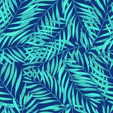 Natural seamless pattern with green tropical palm leaves on blue background. Backdrop with foliage of exotic trees Stock Image