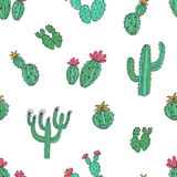 Natural seamless pattern with hand drawn green cactus on white background. Blooming Mexican desert plants. Botanical Vector Illustration