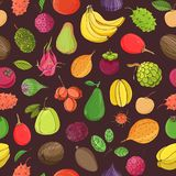 Natural seamless pattern with whole tasty fresh ripe juicy exotic tropical fruits on dark background. Hand drawn. Realistic vector illustration for textile Royalty Free Stock Photos