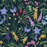 Natural seamless pattern with wild blooming flowers and flowering herbaceous plants on black background. Gorgeous floral. Backdrop with wildflowers and herbs Royalty Free Stock Photo
