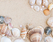 Natural Shell Border Royalty Free Stock Photos