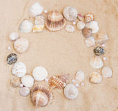 Natural Shell Border Royalty Free Stock Photography