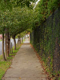 Natural Sidewalk Canopy Stock Photo