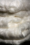 Natural Silk Fibres stock image