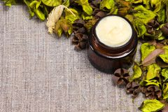 Natural skin care cream Royalty Free Stock Photo