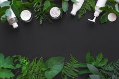 Free Natural Skincare And Leaves Royalty Free Stock Images - 153671959