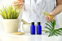 Natural skincare cosmetics research and development concept, Doctor formulating new beauty products from organic natural plants. Natural skincare cosmetics royalty free stock photos